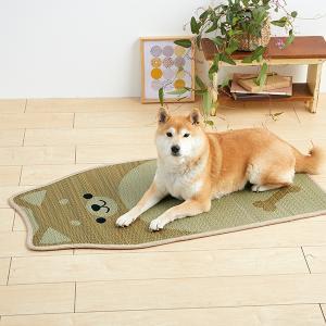 い草 柴犬