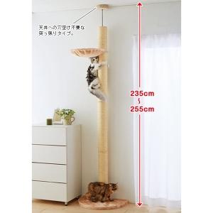 おうちで木登りタワー (キャットタワー 高さ235cm-255cm) シングル【ペット用品】(ペット用品猫おもちゃ)ペット用品  ペットグッズ  ペットフード  ペット  ペピイ  PEPPY  キャットタワー  猫用/【犬・猫の総合情報サイト『PEPPY(ペピイ)』公式通販】