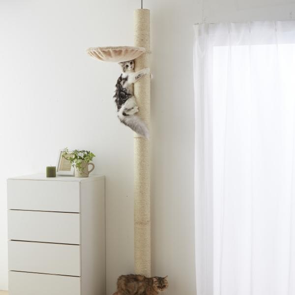 おうちで木登りタワー