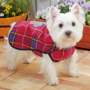 ハッピーレインコート (犬 小型犬 中型犬 大型犬 カッパ 雨具 マントタイプ) ピンク・6号【ペット用品】(ペット用品犬服)ペット用品  ペットグッズ  ペットフード  ペット  ペピイ  PEPPY  レインコート(マントタイプ)  犬用/【犬・猫の総合情報サイト『PEPPY(ペピイ)』公式通販】