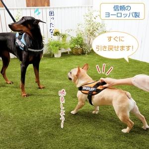 ユリウス K9 IDCハーネス (犬 胴輪 小型犬 中型犬 大型犬) ネオングリーン・L(約・バスト65-80cm)【ペット用品】(ペット用品犬ハーネス)ペット用品  ペットグッズ  ペットフード  ペット  ペピイ  PEPPY  ハーネス  犬用/【犬・猫の総合情報サイト『PEPPY(ペピイ)』公式通販】