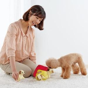 バロウ シマリス【ペット用品】(ペット用品犬おもちゃ)ペット用品  ペットグッズ  ペットフード  ペット  ペピイ  PEPPY  犬用おもちゃ  犬用/【犬・猫の総合情報サイト『PEPPY(ペピイ)』公式通販】