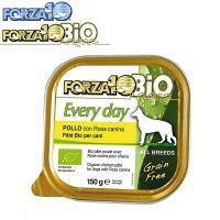 フォルツァ10(FOAZA10) ウェット エブリデイビオ