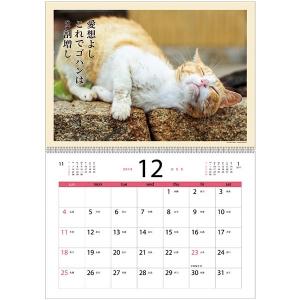 <ペピイ> 猫川柳カレンダー2017 週めくり画像