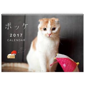 <ペピイ> ポッケカレンダー2017 壁掛け(月めくり)画像