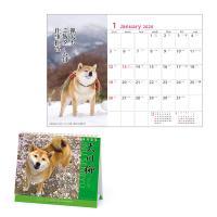 犬川柳 卓上カレンダー2020