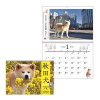 秋田犬カレンダー2020
