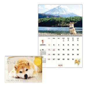 柴犬だいふくカレンダー2020
