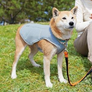 スワンプクーラー (犬 ウェア 暑さ対策グッズ 小型犬-大型犬) L【ペット用品】(ペット用品犬おでかけ・散歩グッズ)ペット用品  ペットグッズ  ペットフード  ペット  ペピイ  PEPPY  お出かけ  お散歩用品  犬用/【犬・猫の総合情報サイト『PEPPY(ペピイ)』公式通販】