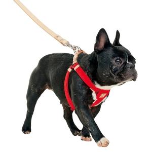 クチタプ セボナーハーネス レッド【ペット用品】(ペット用品犬ハーネス)ペット用品  ペットグッズ  ペットフード  ペット  ペピイ  PEPPY  ハーネス  犬用/【犬・猫の総合情報サイト『PEPPY(ペピイ)』公式通販】