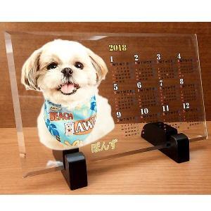 クリスタルカラープリント カレンダー2018 写真右側【インテリア・家具】(インテリア・家具カレンダー)ペット用品  ペットグッズ  ペットフード  ペット  ペピイ  PEPPY  カレンダー  犬用/【犬・猫の総合情報サイト『PEPPY(ペピイ)』公式通販】