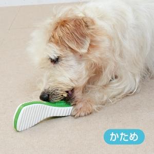 デンタルフィニティ ミディアム【ペット用品】(ペット用品犬おもちゃ)ペット用品  ペットグッズ  ペットフード  ペット  ペピイ  PEPPY  犬用おもちゃ  犬用/【犬・猫の総合情報サイト『PEPPY(ペピイ)』公式通販】