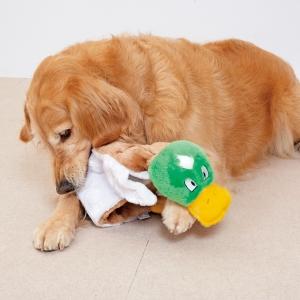 スクイーカーマットL アリゲーター【ペット用品】(ペット用品犬おもちゃ)ペット用品  ペットグッズ  ペットフード  ペット  ペピイ  PEPPY  犬用おもちゃ  犬用/【犬・猫の総合情報サイト『PEPPY(ペピイ)』公式通販】
