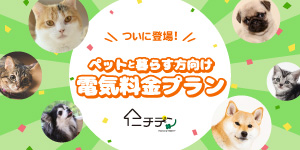 日本発!ペットの飼い主様向けの電気プラン登場!