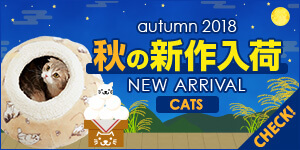 秋冬新商品 CATS 2018
