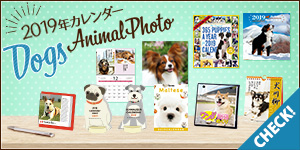 2019年度版犬カレンダーが登場★