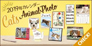 2019年度版猫カレンダーが登場★