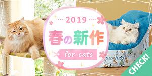 ねこちゃんの春の新作 2019