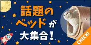 ☆注目☆話題の猫ベッド!