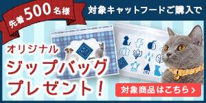 人気キャットフードブルーバッファローのキャンペーン!