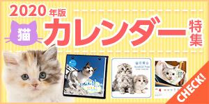 2020年版ねこちゃんカレンダー!