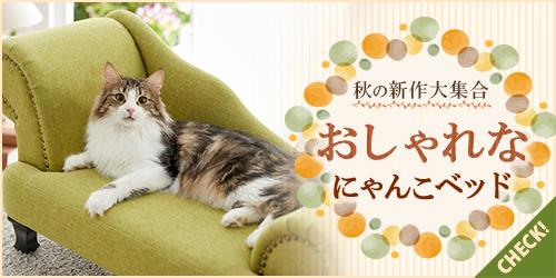 猫様を魅了する話題のベッド集めました