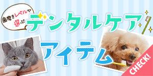 歯磨きレベルで選ぼう!愛犬・愛猫のデンタルケア特集