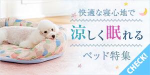 【犬ベッド特集】快適な寝心地で涼しく眠れる!
