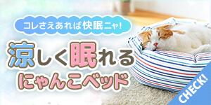 【猫ベッド特集】暑い夏でも快眠できる猫ベッド