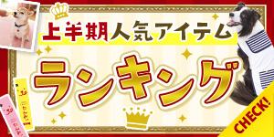 【わんちゃん部門】上半期の人気アイテムランキングを大公開!