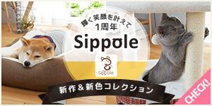 祝1周年!【Sippole(しっぽる)】から新作が登場!