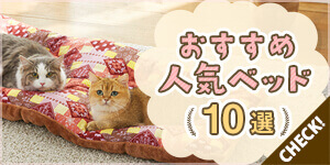 秋のおすすめ人気猫ベッド10選