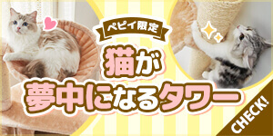 キャットタワー特集-猫の好みや飼育環境に合わせた種類別おすすめタワー