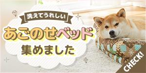 犬ベッド特集-洗える!おしゃれ☆あごのせベッドをご紹介♪