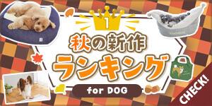 【わんちゃん部門】秋の新作人気アイテムランキングを大公開!
