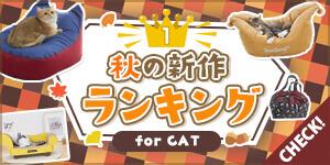 【ねこちゃん部門】秋の新作人気アイテムランキングを大公開!