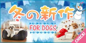 冬の新商品 FOR DOGS