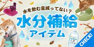 冬もしっかり水分補給しよう!