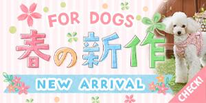 春の新商品 FOR DOGS