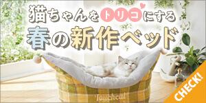 <春の新作>猫ちゃんをトリコにするベッド