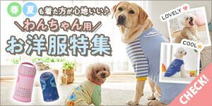 春夏も着た方が心地いい♪【犬用ウェア】