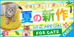 夏の新商品 FOR CATS