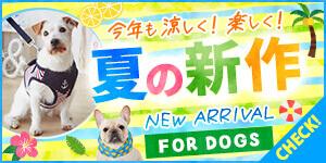 夏の新商品 FOR DOGS