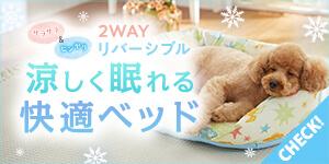 涼しく眠れる快適ベッド【涼眠ベッドシリーズ】