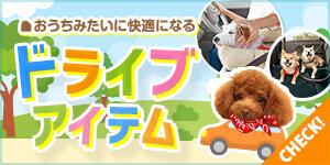 ドライブ時間を快適に♪愛犬のためのドライブグッズ!