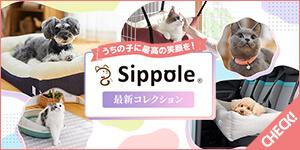 犬猫への愛情をたっぷりつめ込んだブランド「Sippole(しっぽる)」