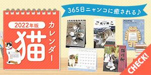 【2022年版】猫ちゃんだらけのカレンダー特集!