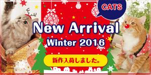 【CATS】冬の新作入荷しました!