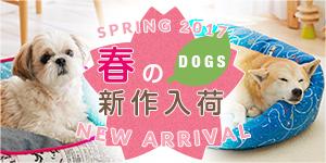 わんちゃん編 春夏新商品2017