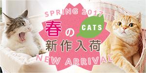 猫ちゃん編 春夏新商品2017